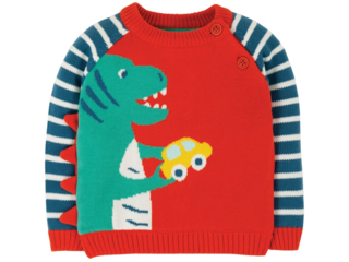 Baby und Kinder Pullover Dino